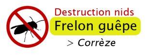 logo entreprise tuer frelon